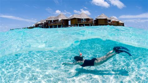 best tour maldive best of sri lanka and the maldives adventure