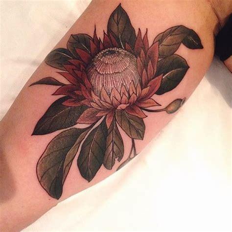 tattoo protea flower 9 best protea tattoos images on pinterest tattoo ideas
