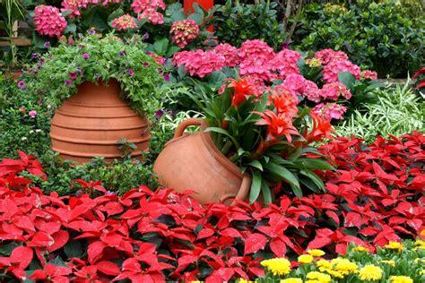 Planter Flowers by 25 Hydrangea Flower Pot And Planter Arrangements Photos