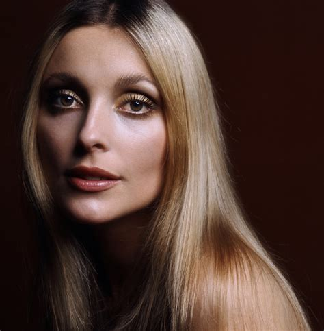 picture of sharon tate sharon tate annex