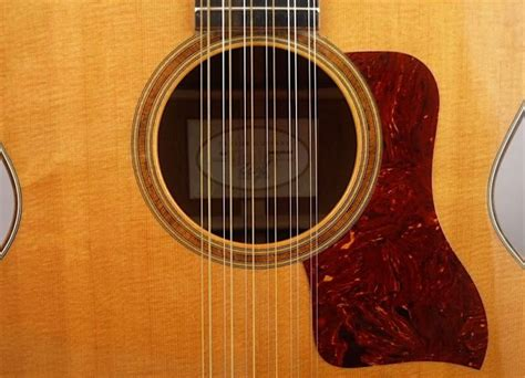 Guitar String - 12 string guitar versusbattle