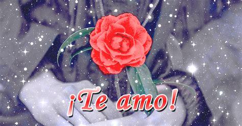 imagenes de rosas hermosas con movimiento hermosas im 225 genes de rosas con movimientos gratis
