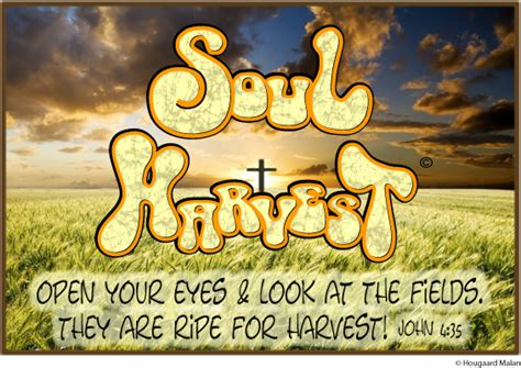 soul harvest the world b007cz5md6 google images