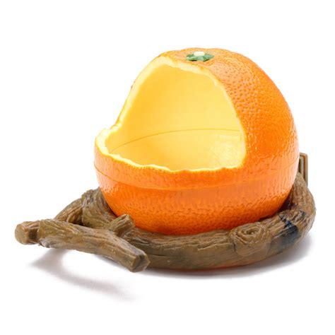 orange plastic bird cup bird food feeder alex nld