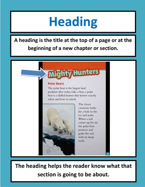 what is a book section navigating nonfiction text in the common core classroom