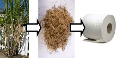 How To Make Paper From Sugarcane Bagasse - reduce reuse reinvent green janitorial supplies sugar