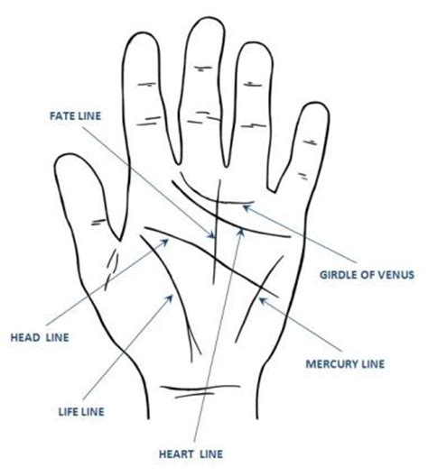 lines in palmistry reading major my place for telling ranting and september 2009