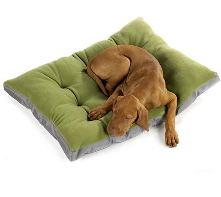 Eco Futon by Bowsers Eco Futon Bed Mat Beds For Large Dogs At Glamourmutt