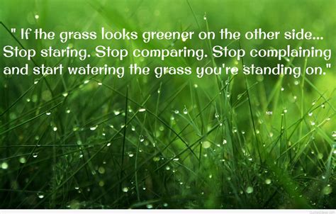 green wallpaper with quotes top 100 thoughts quotes with wallpapers images hd