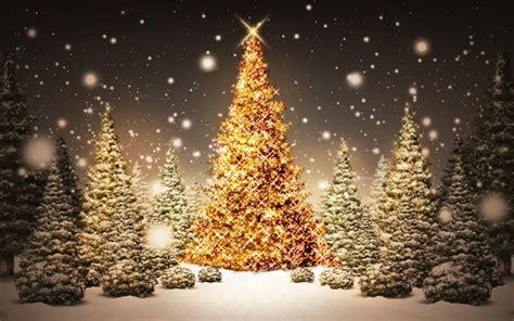 fotografias de arboles de navidad wallpapers de navidad para tu pc im 225 genes taringa