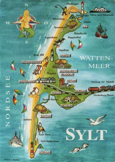 Kaos Syl tattoos on the sylt island aniareads weblog
