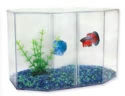 Aquariums For Sale   The Aquarium Company