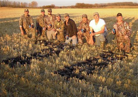 duck hunt saskatchewan goose hunts guided duck hunts goose hunts waterfowl guides outfitters