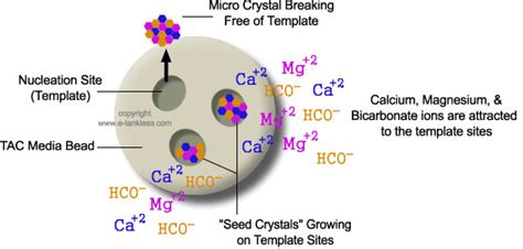 How Tac Filters Prevent Hard Water Scale Template Assisted Crystallization
