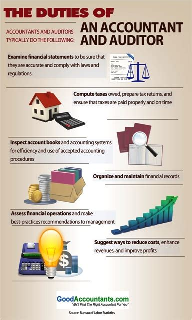 financial auditor job description the duties of an accountant and auditor infographic
