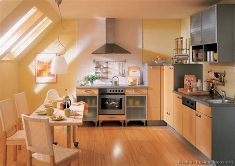 europa kitchen cabinets european kitchen cabinets pictures and design ideas