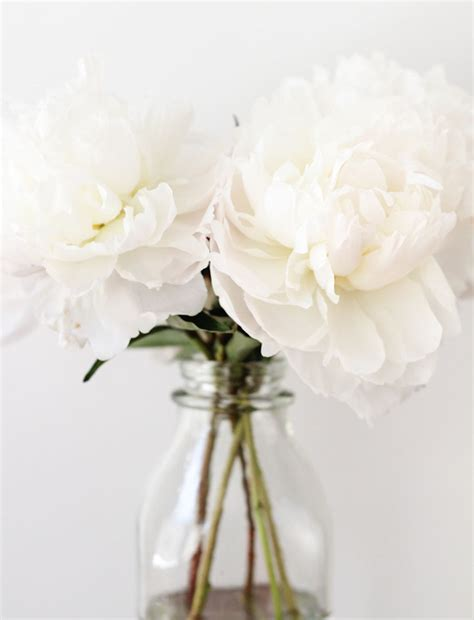 All White Decorations by Throw An All White With These Ideas For Food And