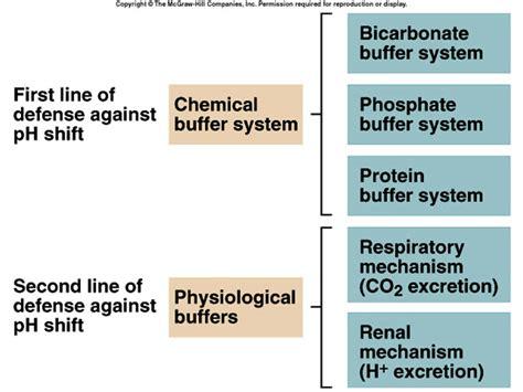 hydrogen carbonate buffer glucophage 850 mg ne işe yarar