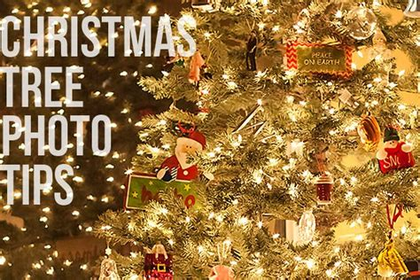 christmas tree photo settings for your dslr say cheese