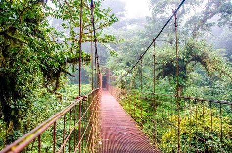 ecotourism a step closer to nature antilog vacations