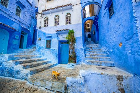 Get It Now Into The Blue Second City Style Fashion by Four Ways To Explore Chefchaouen Morocco S Blue City