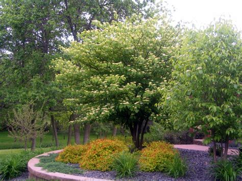 landscaping lincoln ne landscape architect lincoln ne 28 images landscaping photos landscape design photos omaha ne
