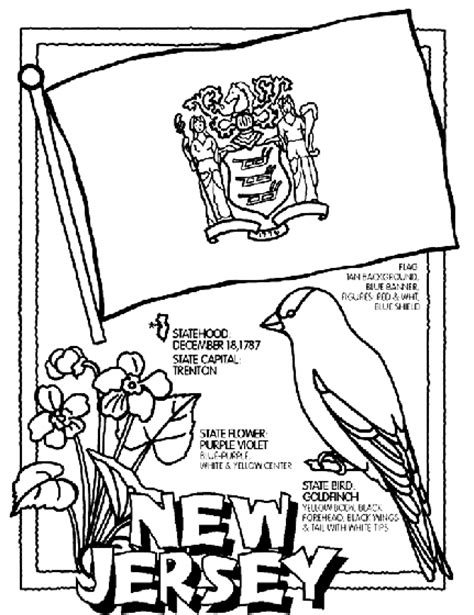coloring page of new jersey state flower new jersey coloring page crayola com