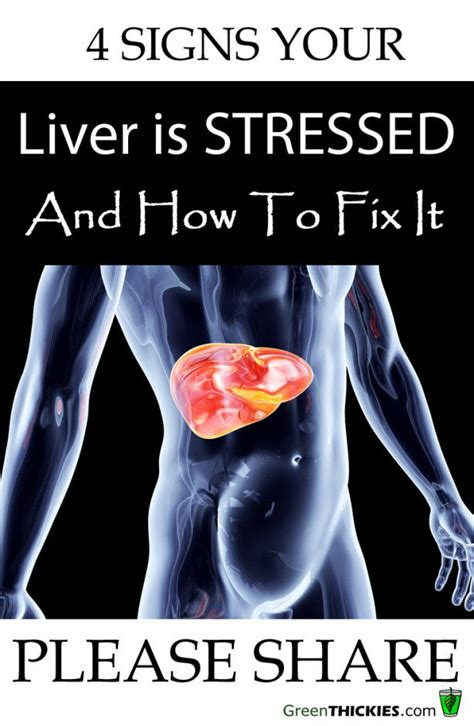 Liver Detox For Fibromyalgia by 4 Signs Your Liver Is Stressed How To Fix It Cancer