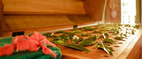 Magic Of Ayurvedic Detox Pancharkama Free Pdf by Best Ayurvedic Resorts In Kerala Ayurvedic Resort In