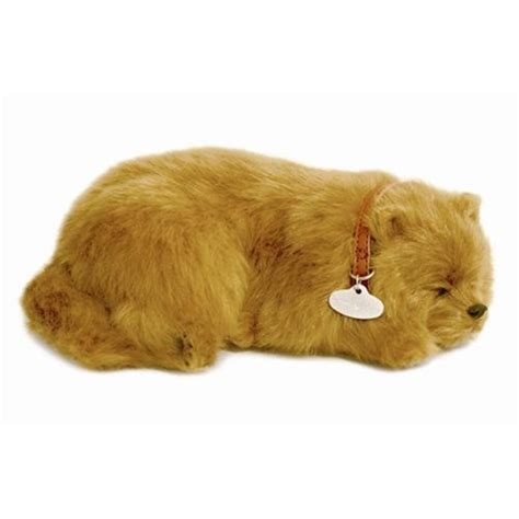 my pomeranian is wheezing stuffedanimals stuffed plush dogs petzzz stuffed plush pomeranian