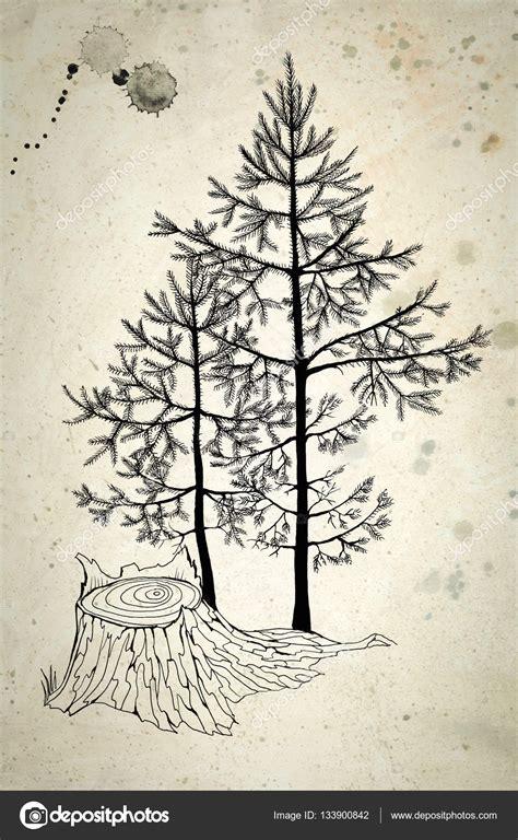 dibujo de arboles de navidad l 225 piz negro de dibujo de peque 241 os 225 rboles de navidad en un