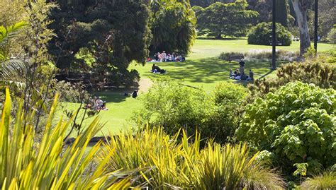 Melb Botanical Gardens Brands We Royal Botanic Gardens Truly Deeply Brand Agency Melbourne