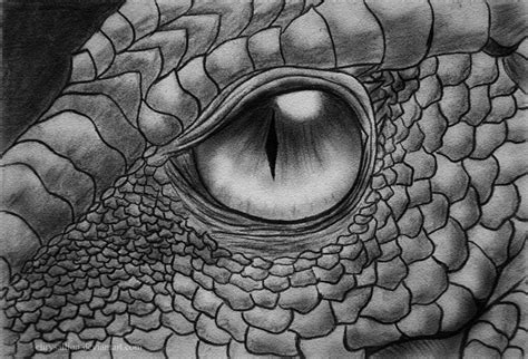 dragon eye by chrysallion on deviantart