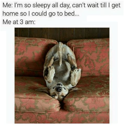 25 best memes about so sleepy so sleepy memes