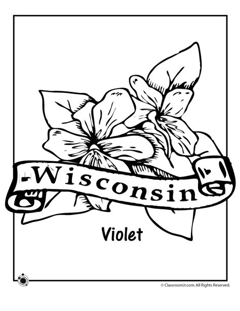 State Flower Coloring Pages Wisconsin State Flower