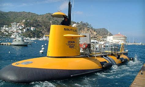 catalina island boat tour catalina adventure tours in catalina island ca groupon