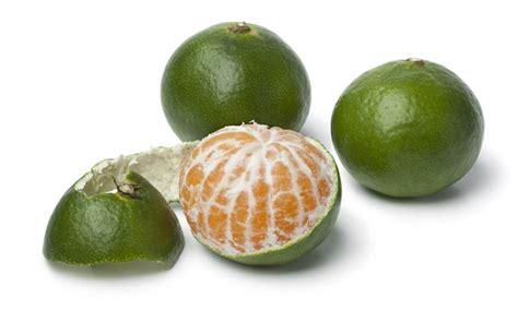 News Roundup Deaths Tesco Going Green And New Standards For Offset Schemes by Tesco Puts Green Satsumas And Clementines On The Shelves