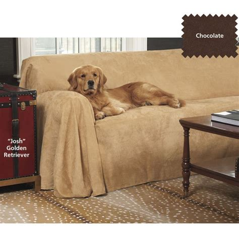 Couch Cover Dog Pinterest