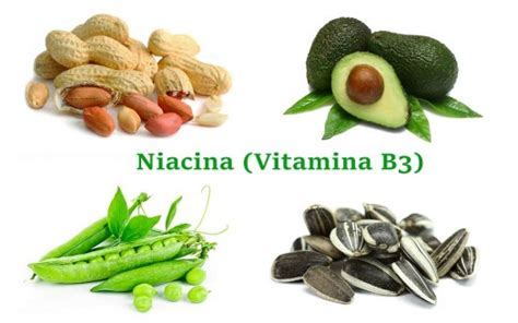 niacina alimenti i 10 cibi pi 249 ricchi di vitamina b3 naturopataonline