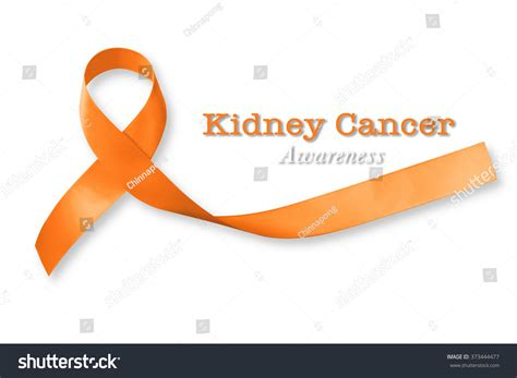 kidney cancer color kidney cancer awareness ribbon www imgkid the