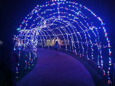 kid valley lights light delights valley gardens dazzles out about with