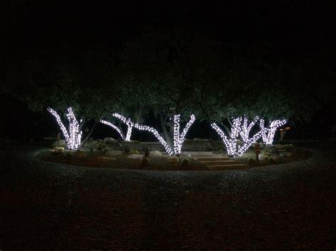 tucson landscape lighting tucson landscaping by terra