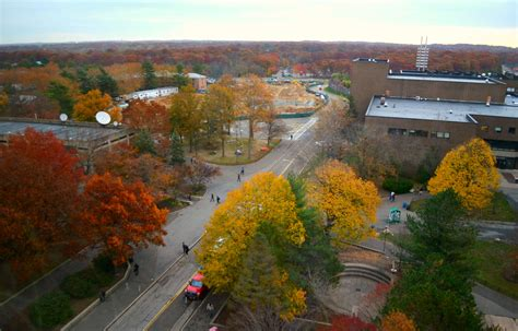 Mba Stony Brook Ranking by The Princeton Review S Professors Ranking Lacked Important
