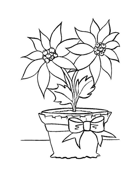 Free W Coloring Pages by Free Printable Poinsettia Coloring Pages For