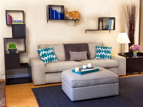 The Living Room Or Not Cat Design Ideas Your Cat Will Hgtv S Decorating