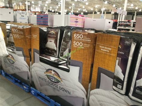down comforter costco pacific coast feather white goose down comforter king and