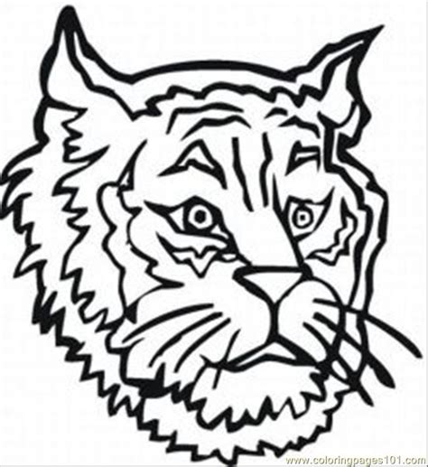Tiger Cub Scout Coloring Pages free coloring pages of wolf cub scout