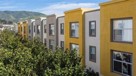 sfsu housing san francisco state university sf state housing uloop
