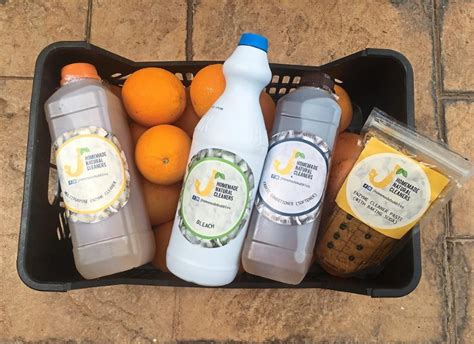 homemade tanning bed cleaner how ap peeling is this eco idea green ladies cleaning