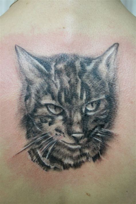 cat tattoo deviantart portrait cat tattoo by 2face tattoo on deviantart